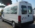 Boxer ducato minibus 14 posti - 4