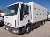 Eurocargo refrigerato a-40�  IVECO CAMION e FURGONI SURGELATI